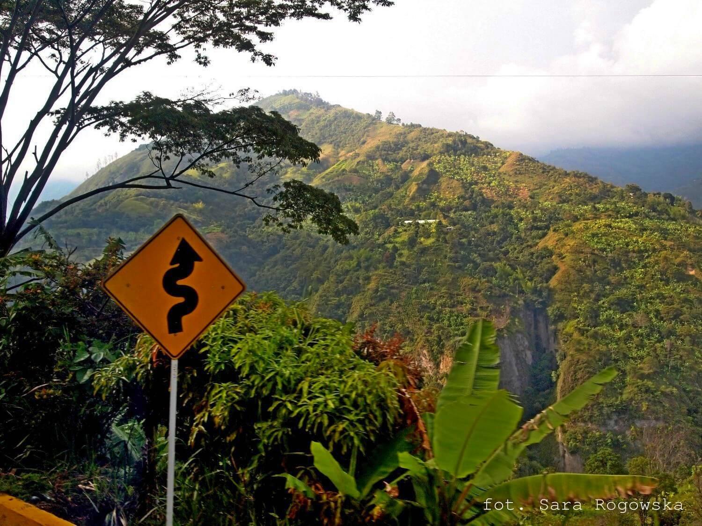 Droga do Pereiry