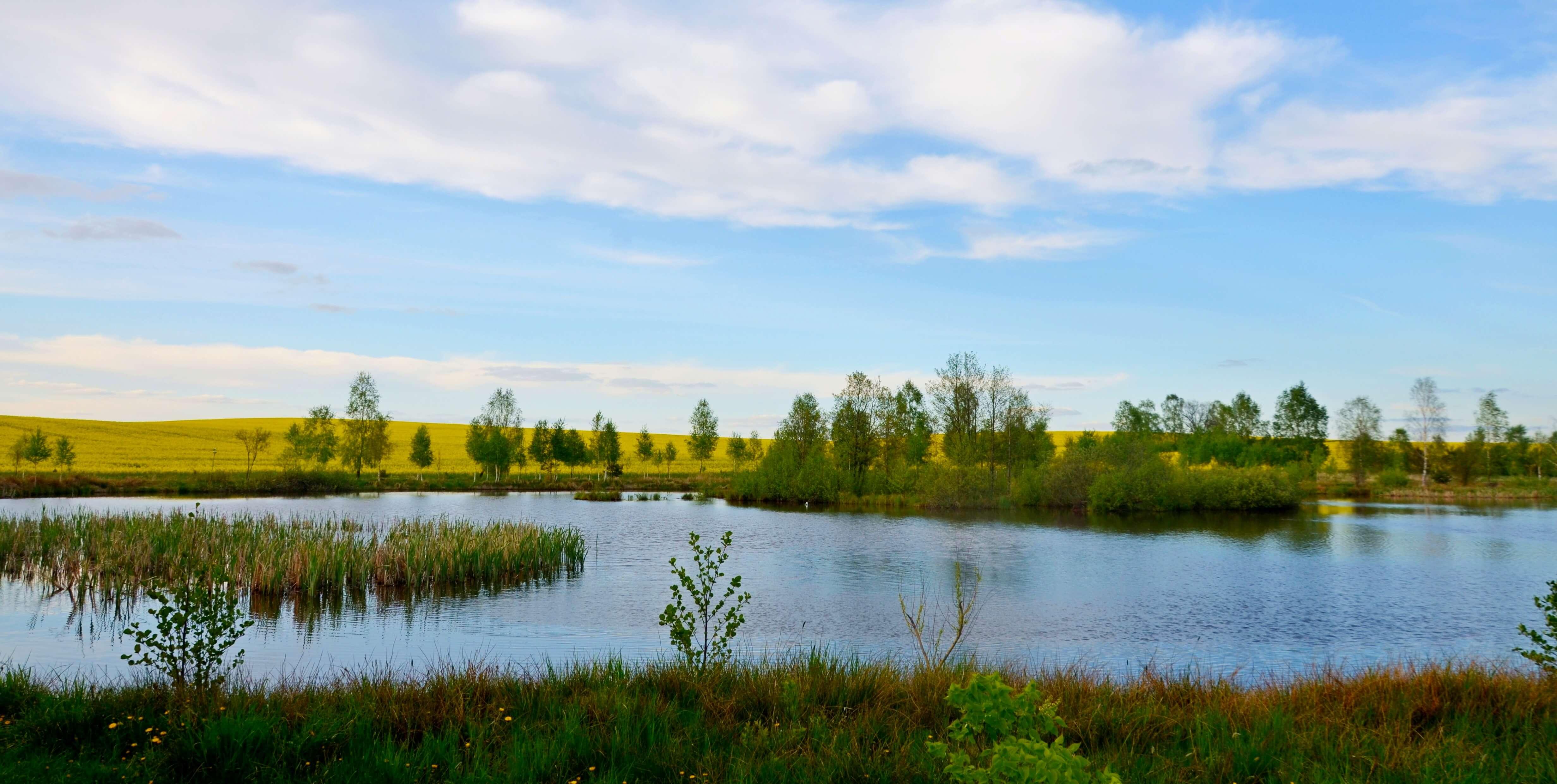 Zaosie i jezioro Świteź