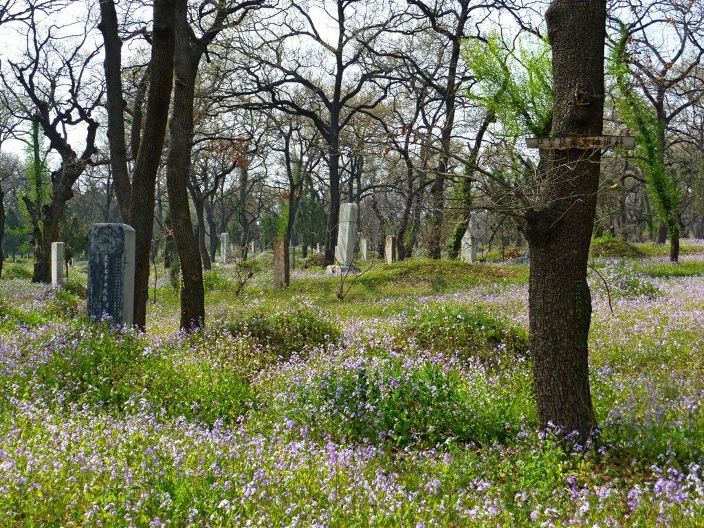 Cmentarzysko, Qufu