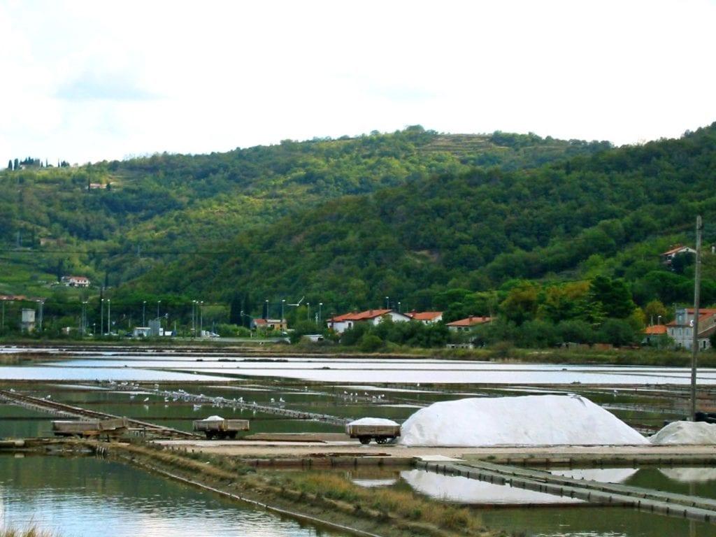 Riwiera Słoweńska - Słowenia Adriatyk Saliny