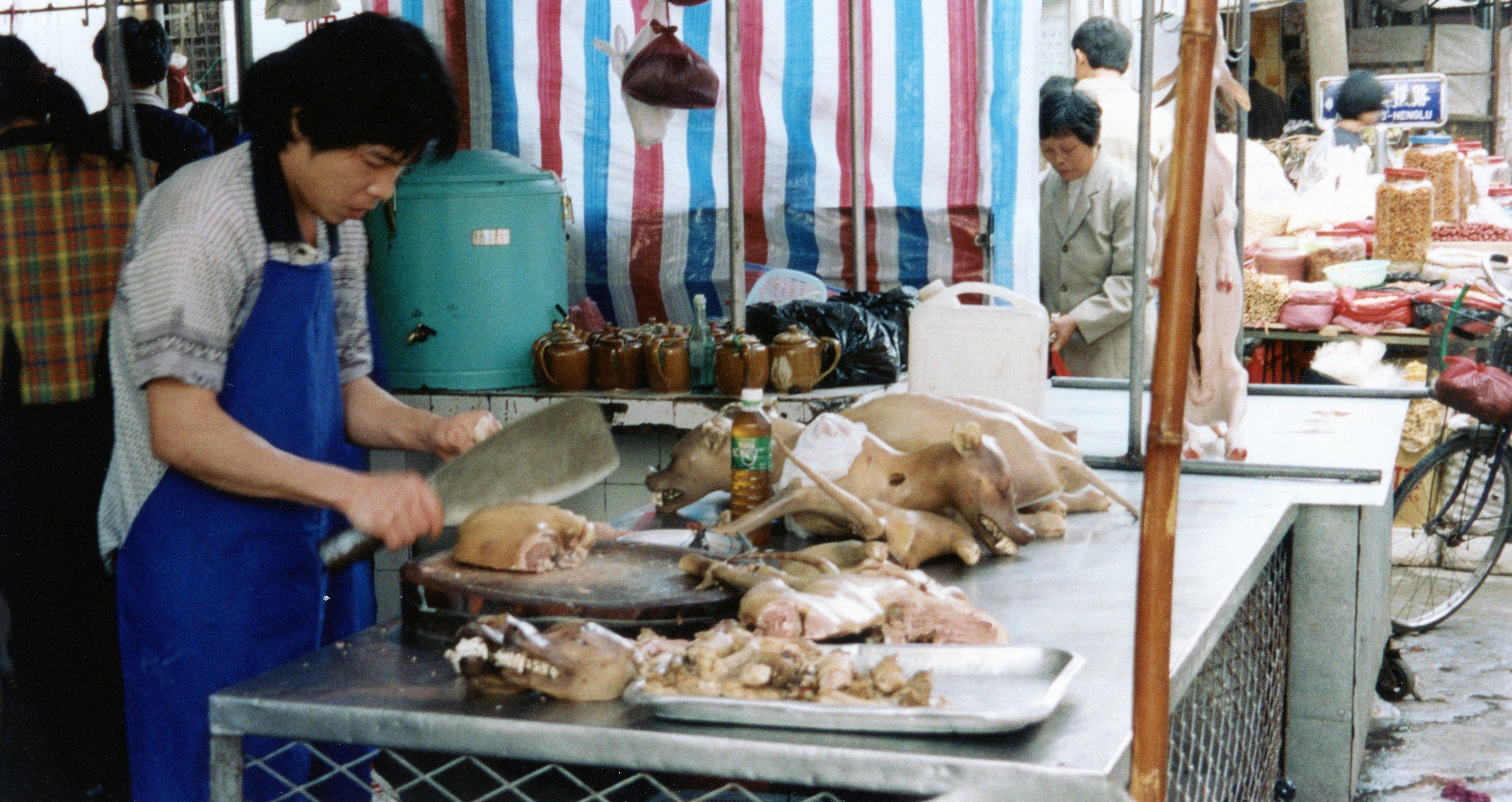 Festiwal Yulin psie mieso chiny