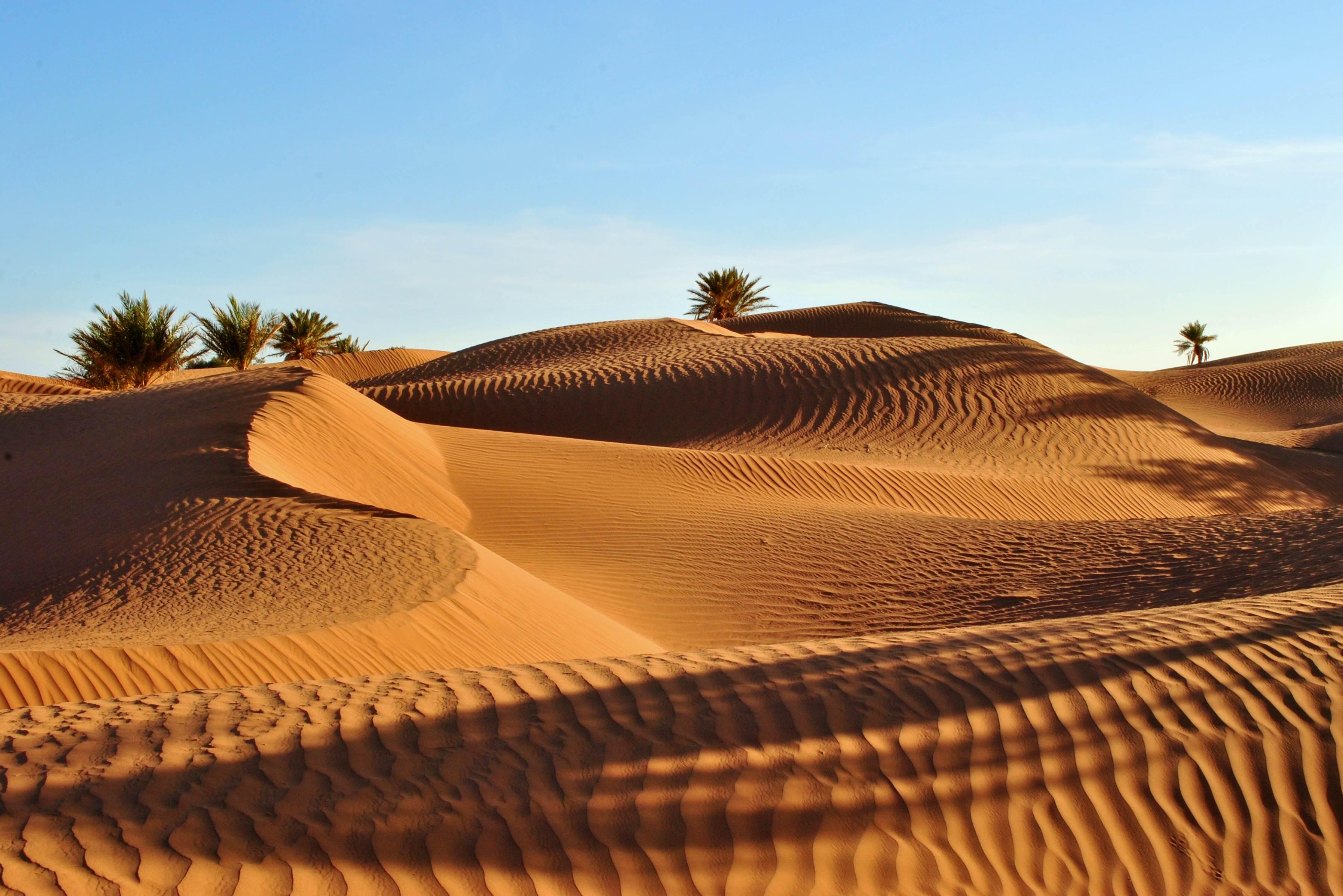 Sahara Piękno krajobraz Maroko