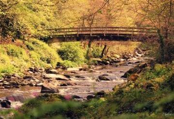Rzeka East Lyn anglia