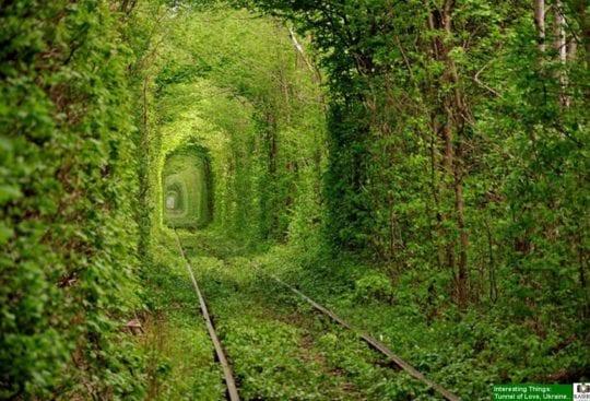 tunel zakochanych na ukrainie