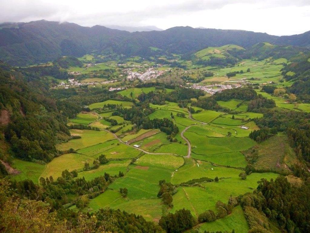 zieleń przyroda roślinność portugalia Azory