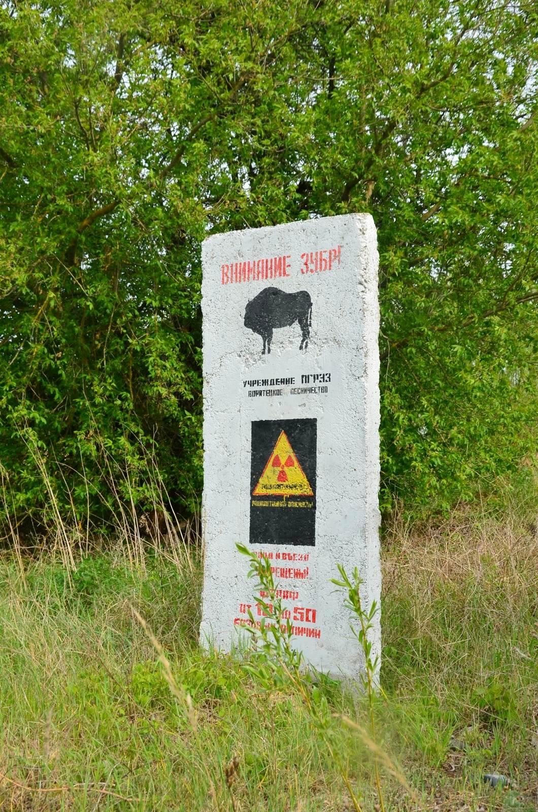 wjazd do rezerwatu - Białoruś zona