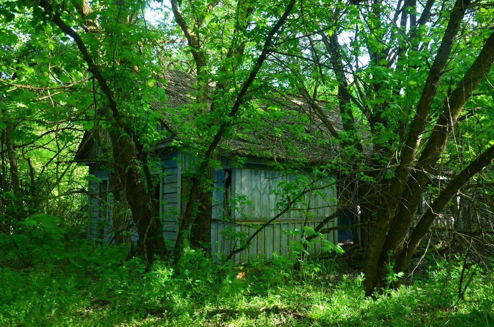 pozostałości wsi - Białoruś zona