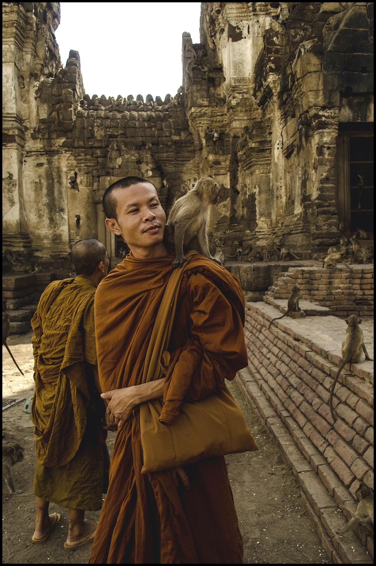 mnich z małpą w świątyni w Lopburi