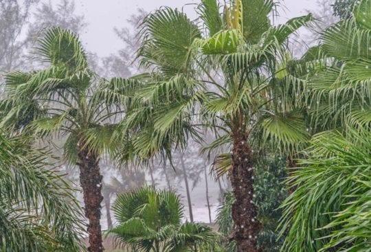 Deszcz na wyspie Phuket