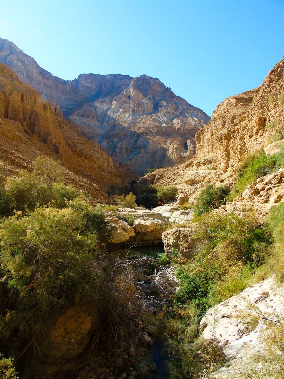 Rezerwat przyrody Ein Gedi to atrakcja Izraela
