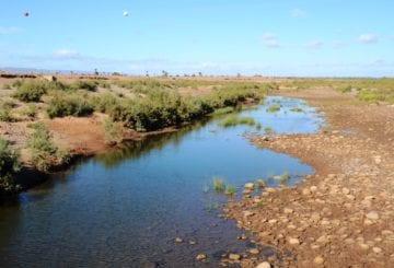Rzeka Draa w Maroko