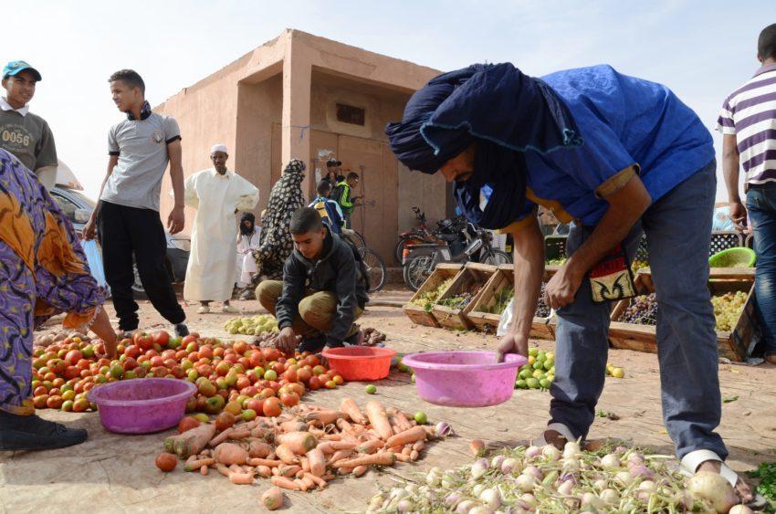 Woda jest potrzebna do upraw, z których żyje wielu Marokańczyków. W Maroko tradycyjne rolnictwo jest nadal bardzo popularne. Z powodu niedoborów wody często wprowadza się jednak rośliny genetycznie modyfikowane, wymagające mniejszego nawodnienia. Fot. B. Latos