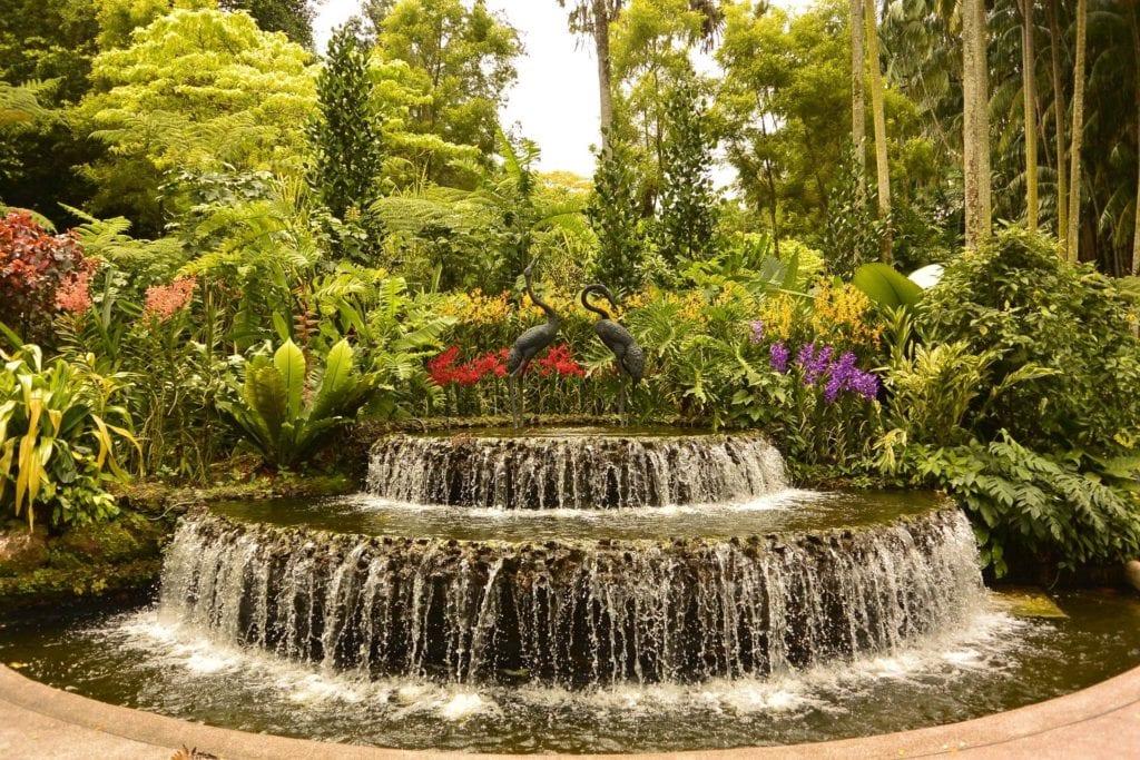 Ogród botaniczny Singapur