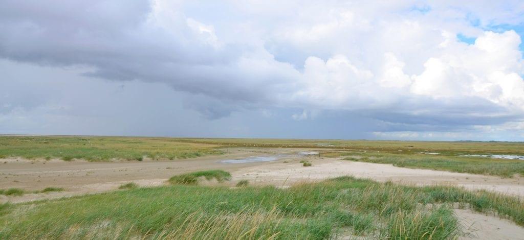 Krajobraz wyspy Romo, Dania
