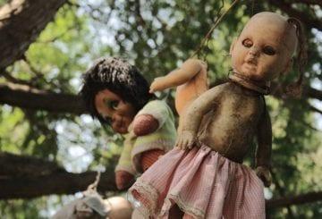Isla de las Munecas w MEksyku lalka na drzewie