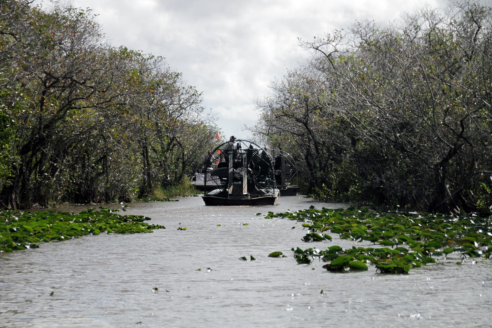 Wycieczka po PN Everglades