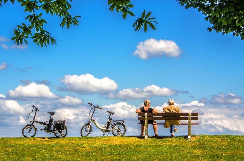 rowery widok
