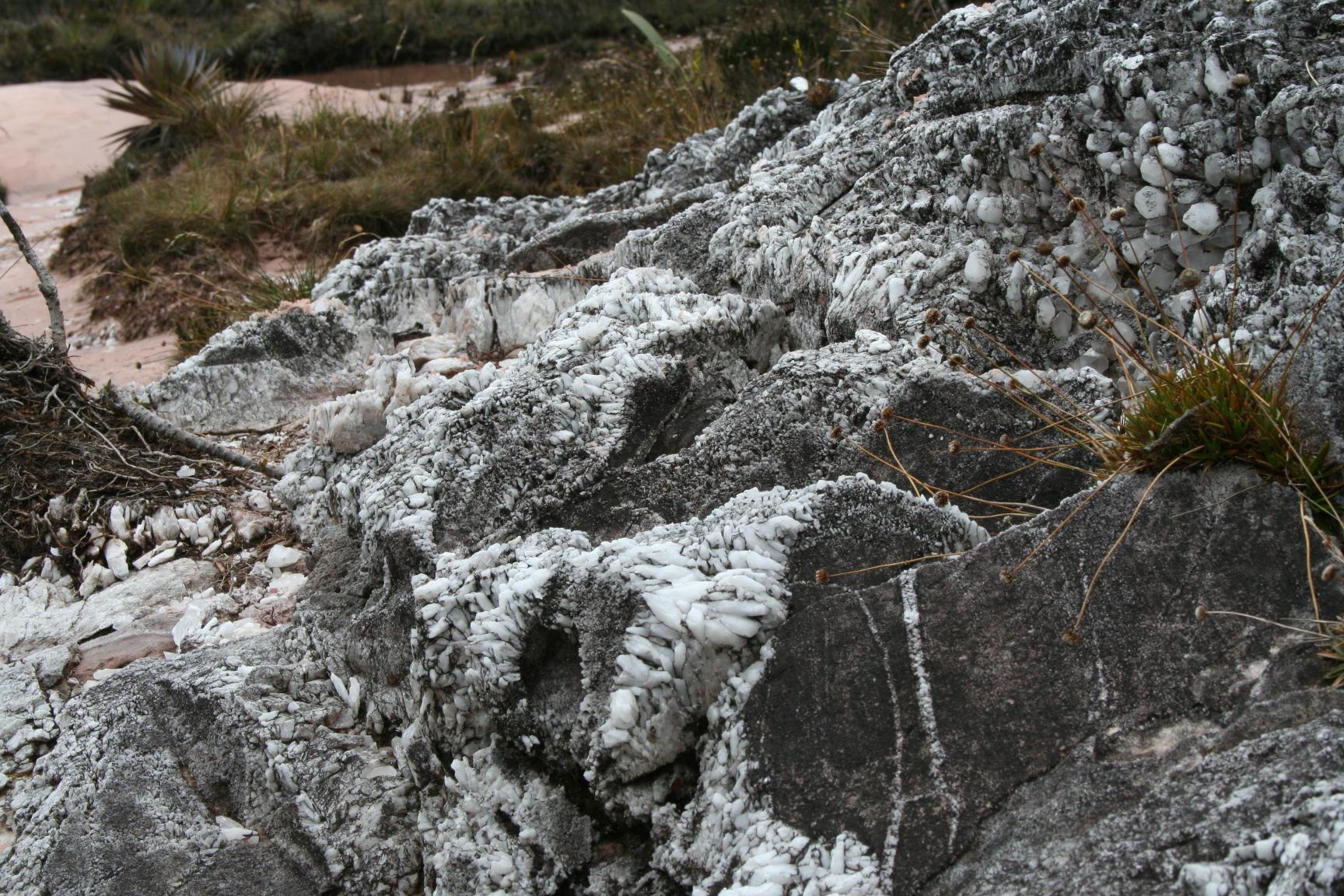 Kamienie w Dolinie Kryształów pokrywają jałową ziemię. Zabranie ich ze szczytu według wierzeń rdzennych ludów przynosi pecha… i perspektywę wenezuelskiego więzienia. / źródło: Carlos Felipe Antonorsi