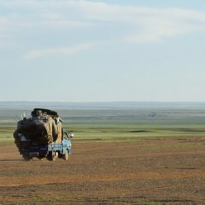 Step - Mongolia